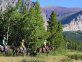 meadow-with-a-view-cracker-flats-ride