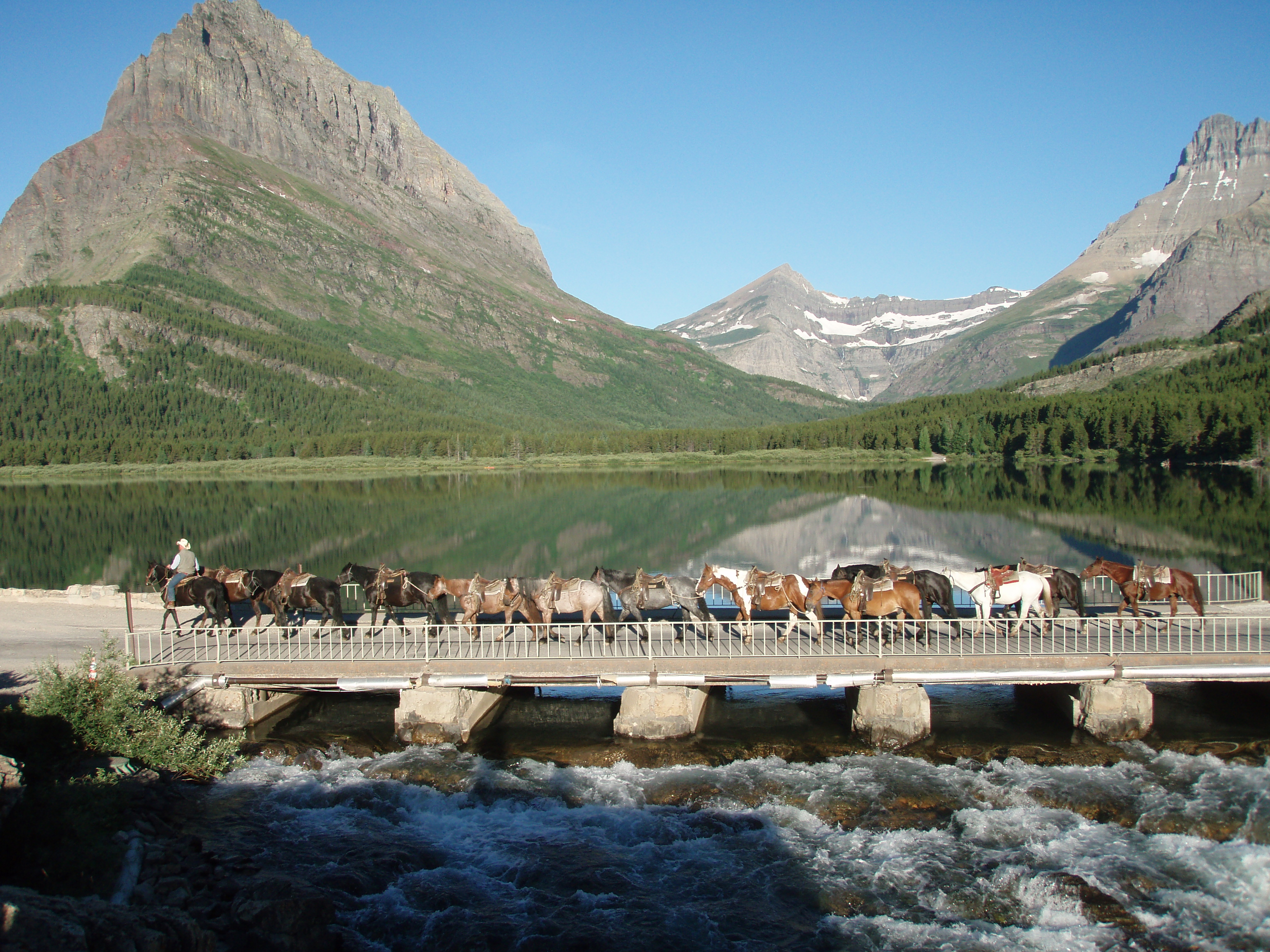 horseback-riding-in-the-rocky-mountains